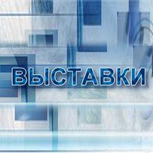 Выставки Новониколаевского